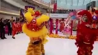 某年沙田新城市廣場舞獅