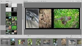 Aperture 3 Training: 4b - Customizing Your Book
