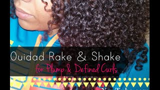Plump, Defined Curls With No Frizz: The Ouidad Rake & Shake Method