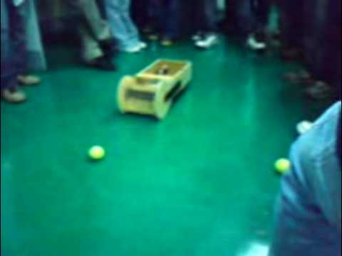 Developing a Tennis Ball Collection Robot Prototype