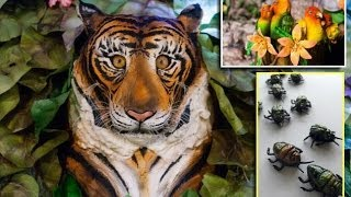 Incr-EDIBLE jungle : Tigers, monkeys, bugs, flowers and birds of paradise all made from CAKE