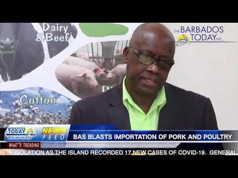 BARBADOS TODAY EVENING UPDATE - July 15, 2021