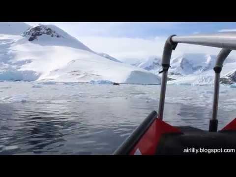 Fahrt mit dem Polarzirkelboot durch  das Eis in Neko Harbour, Antarktis