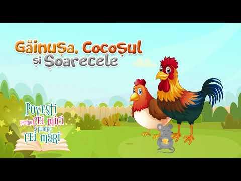 Gainusa, cocosul si soarecele – Anda Niculina Pitis – Povesti pentru cei mici si pentru cei mari  – Cantece pentru copii in limba romana