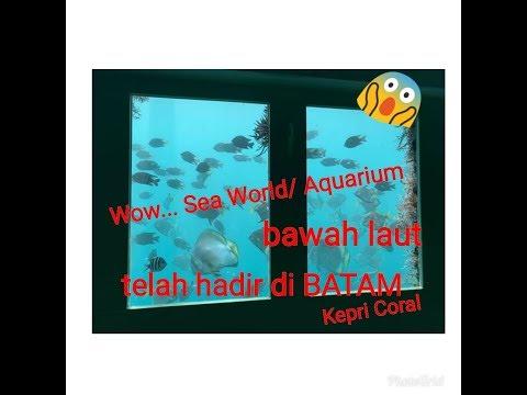 koral-kepri---tempat-wisata-baru-di-batam