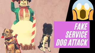 Service Dogs ATTACKED at Cabela's?! Meet Service Dog's SISTER?! (Training Vlog)