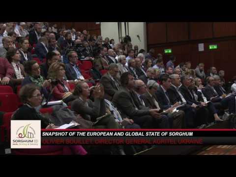 1st European Sorghum Congress - Workshop 1