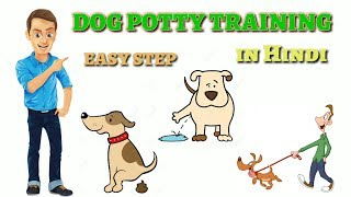 How To Potty Training your dog | In Hindi |