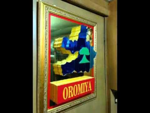 Download Oromummaan Dhiiga: By Beenyaa Dirbabaa