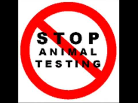 animal testing is inhumane and should Earlier this year we learned that all ferry companies and the uk's airlines have stopped transporting animals for research after campaigning by animal rights groups.