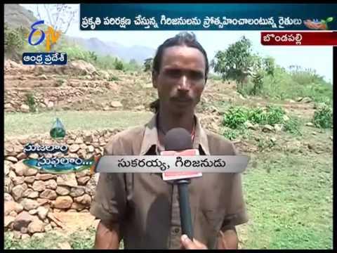Mountain Farming | Farmers in Vizianagaram District | A Story