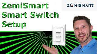 Setting Up Zemismart Smart Switch