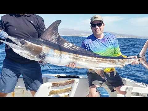 Sport Fishing Los Cabos, Baja California Sur Mexico. Cabo San Lucas #MARLIN #SPORTFISHING