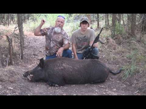 2 Hard Charging Hogs And A Monster Boar Killed By Women
