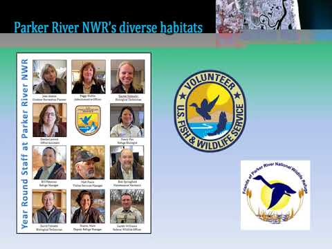 Introduction to Parker River National Wildlife Refuge