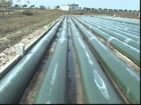 Algae Photobioreactor 15 tons / Hectare - Seeks Asparagopsis taxiformis partners hemp bioplastics