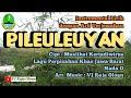PILEULEUYAN Instrumental Lirik & Arti Terjemahan. Lagu Daerah Jawa Barat. : VJ Raja Oloan