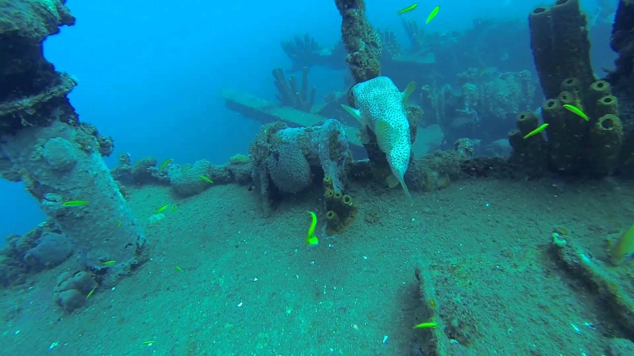 Plongée Sous Marine Réserve Cousteau Epage Le Franjack Disc Movie