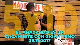 NADIE SABE NADA - (5x10): El anacardo es un cacahuete con gigantismo