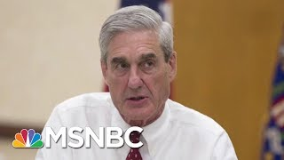 President Donald Trump Hurls Attacks At The Special Counsel Robert Mueller | MSNBC