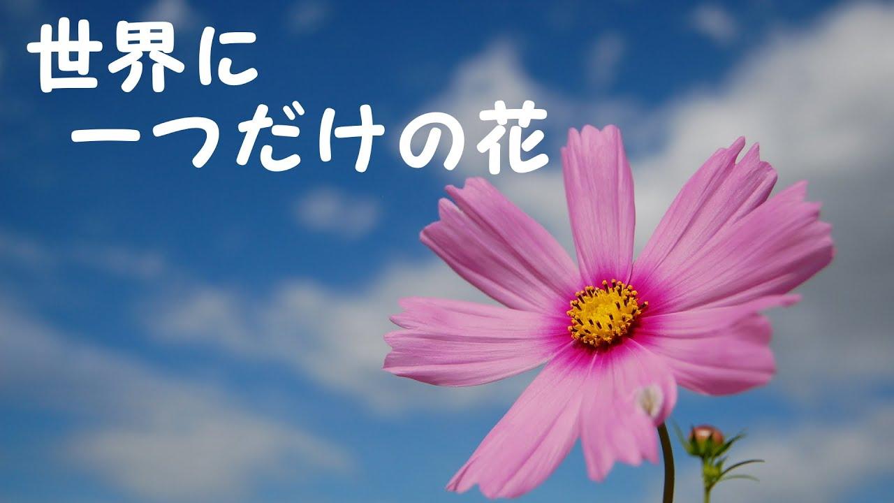 槇原 敬之 世界 に 一 つ だけ の 花