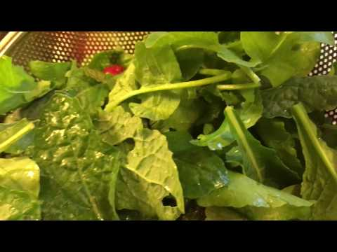 How to healthy homemade Salad from your Garden! Quick Easy Recipe with Dressing