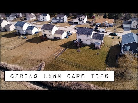 Spring Lawn Care Tips – The FIRST Thing To Complete In Your Lawn for 2018