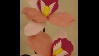 Paper Flower - Cattleya / orchid