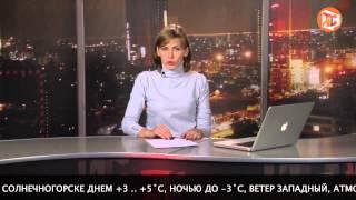 Погода в Солнечногорске