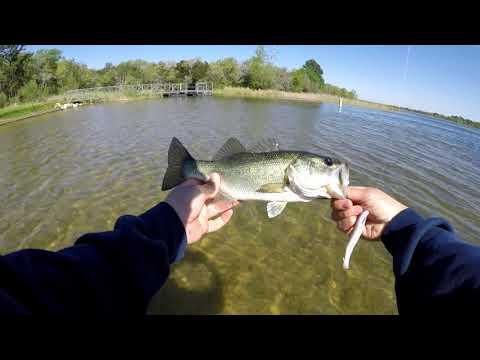 Bass Fishing At Lake Bastrop, Bastrop Texas