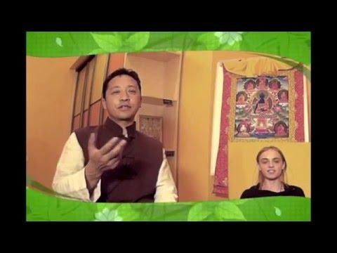 Клиника тибетской медицины «Тибет» в Москве - секреты