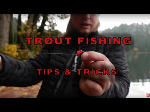 How To Fish Salmon Eggs For Trout Fishing (SUPER EFFECTIVE!!)