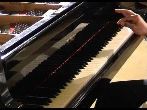 Ligeti: Musica ricercata 2, Vicente Uñón