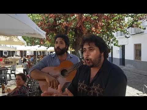 Cante flamenco en los Caracoles -Los Chipirones - Albaicin