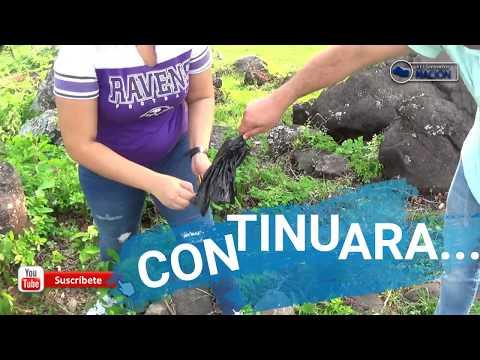 Dia de pan y cafe en El campo de El Salvador parte 2