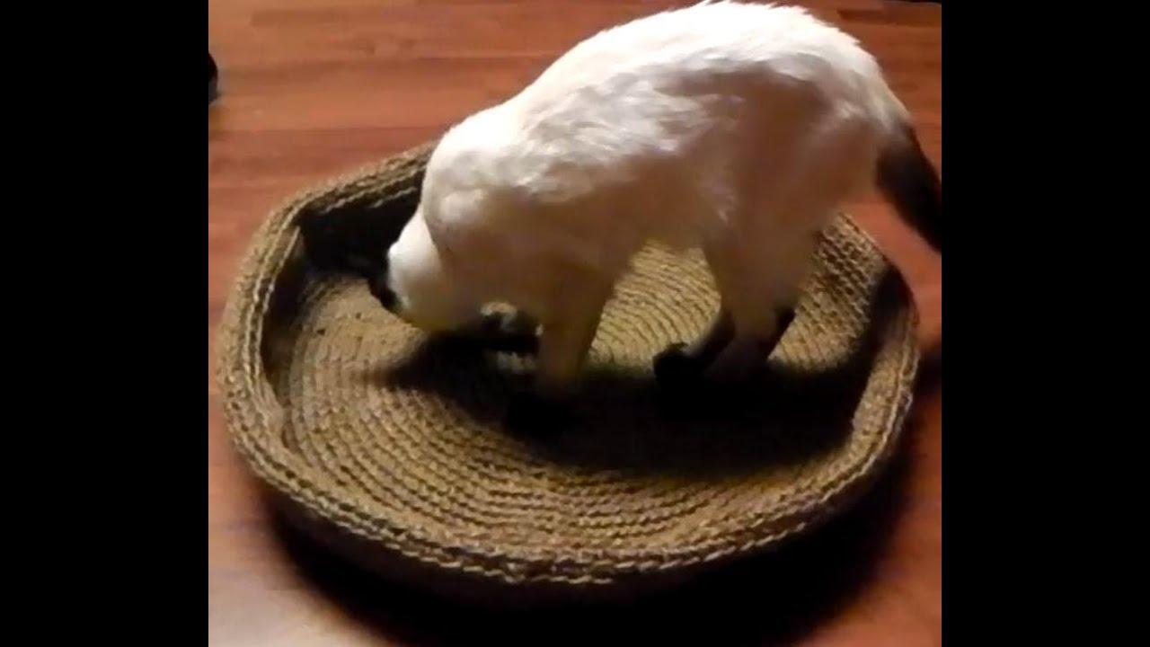 Katzenkorb Hundekorb Korb Häkeln Linkshänder Anleitung