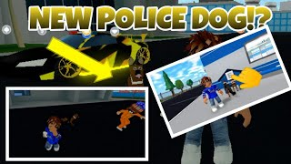 Roblox Mad City Dog Update R Bown Hack Robux - buy my new 4000000 dollar mansion in roblox roblox account