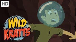 Wild Kratts - Diggers   Kids Videos