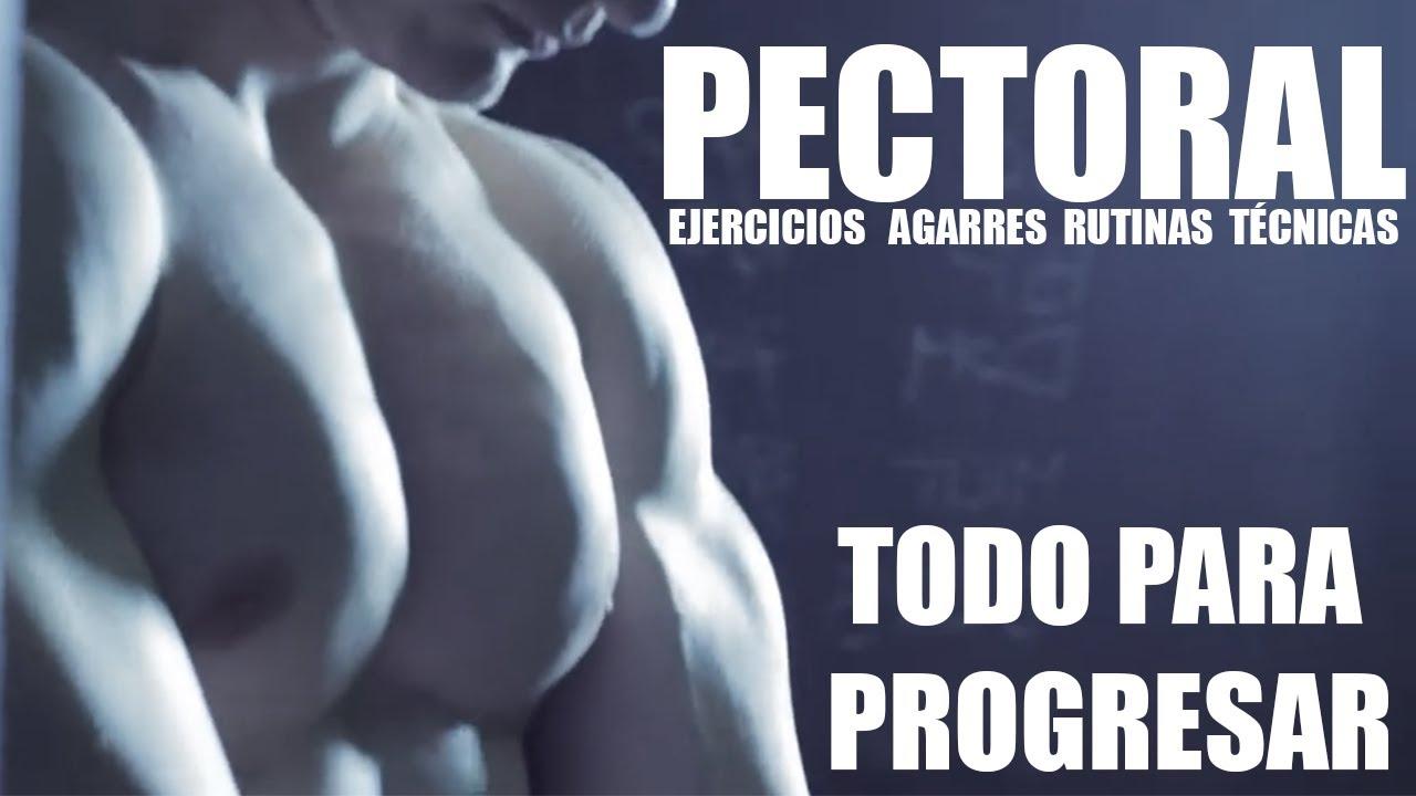 ENTRENAMIENTO DE PECTORALES | RUTINA Y EJERCICIOS PARA ENTRENAR ...