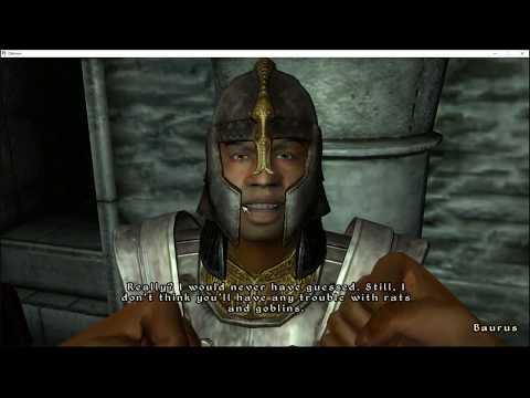 The Elder Scrolls IV: Oblivion All Quests Speedrun 7:20:38