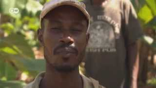 Cloud of xenophobia grows in Dominican Republic | Journal