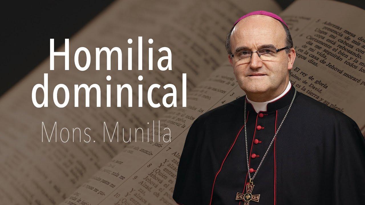 Homilía 5-7-2020 Domingo XIV del T.O. BAUTIZOS Y CONFIRMACIONES de adultos