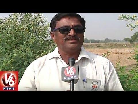 Nizamabad Farmers Earning Huge Profits With Organic Farming | V6 News