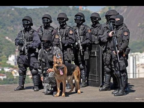 POLÍCIA PENAL - SP - GIR Grupo de intervenção rápida - YouTube