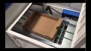 Tray Forming Machine - MP4T - Beef Tomato, TOV, Cukes and Peppers Box