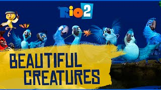 Watch Barbatuques Beautiful Creatures video