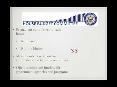 Gov Review Video #27: Congressional Committees