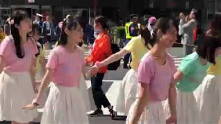 【4K】赤羽馬鹿祭り2018  馬鹿踊りパレード 「城北信用金庫」