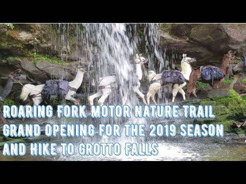 Roaring Fork Motor Nature Trail Opening Day 2019 Hike to Grotto Falls
