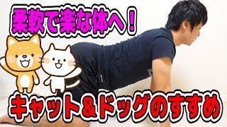 【エクササイズ】柔軟で楽な体へ!「キャット&ドッグ」